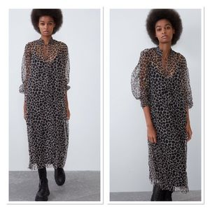Zara printed tulle dress NWT